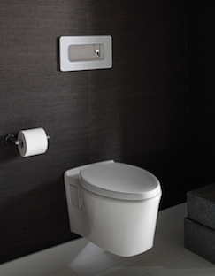 Product Trends: Wall Hung Toilets
