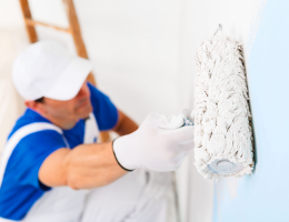 Insider Tips for the Experienced Painter