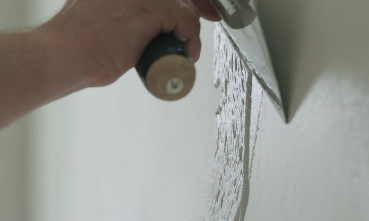 remodeler using plaster