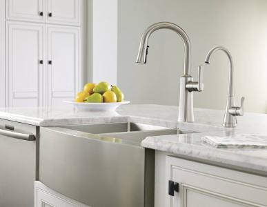 Moen Etch Kitchen Suite